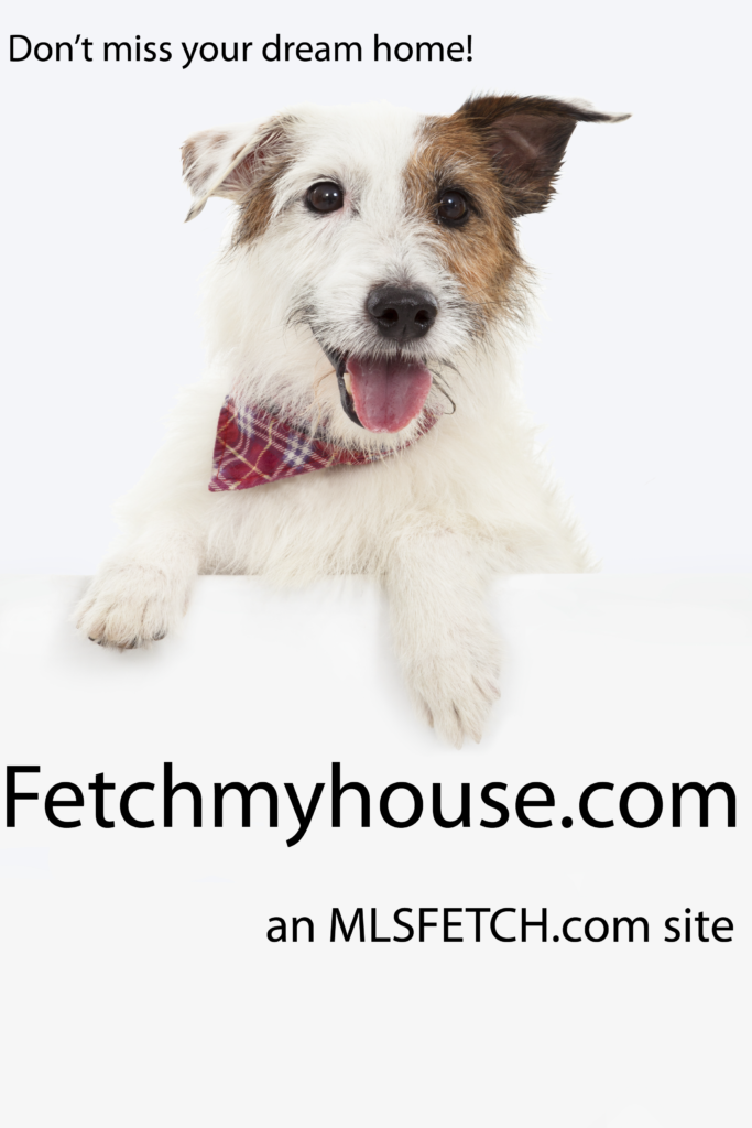 Best Realtor Wisconsin Fetch